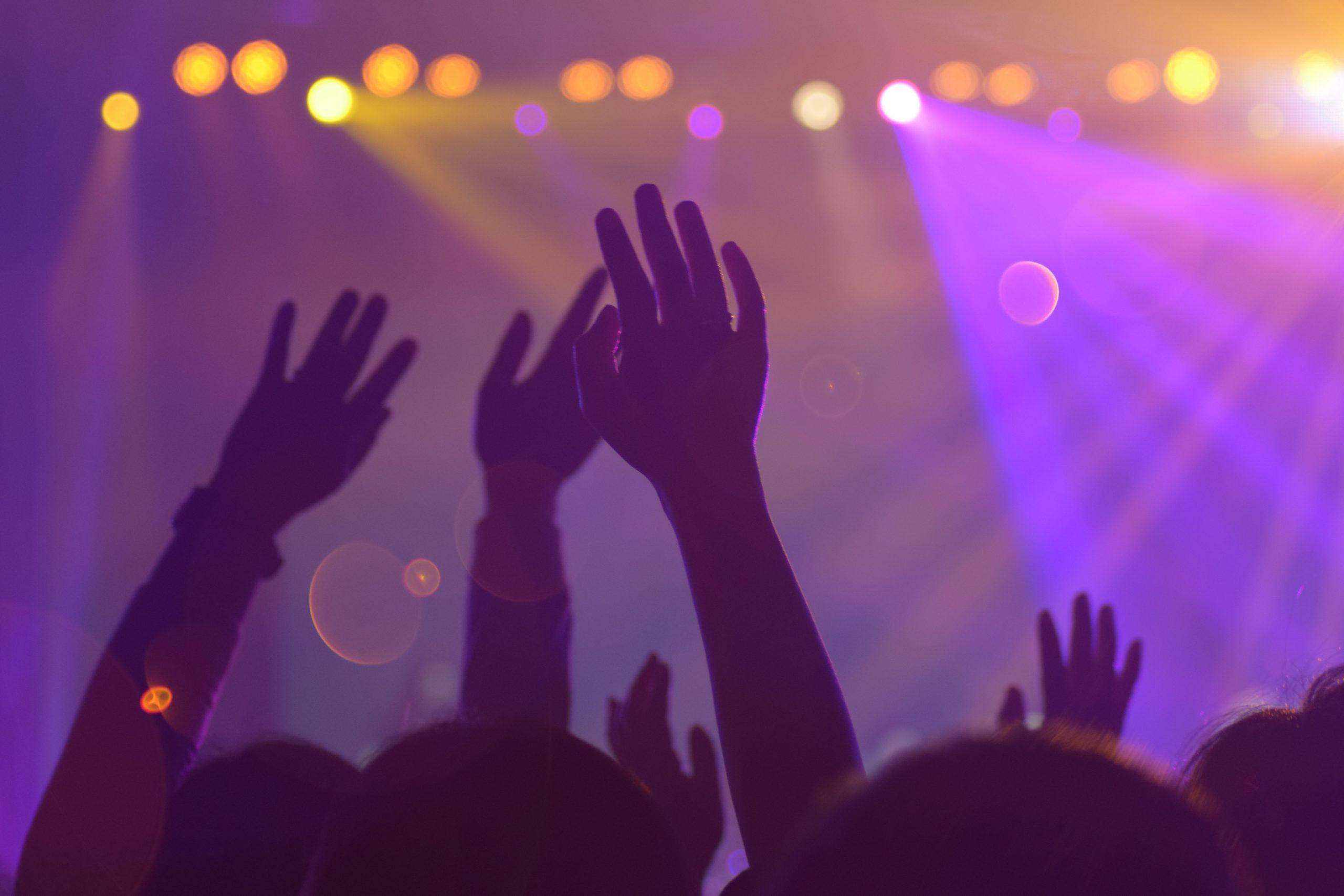 Musicians/Bands
